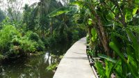 Beautiful bike path in the Bangkok Jungle