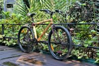 Hybrid bamboo bike in the green
