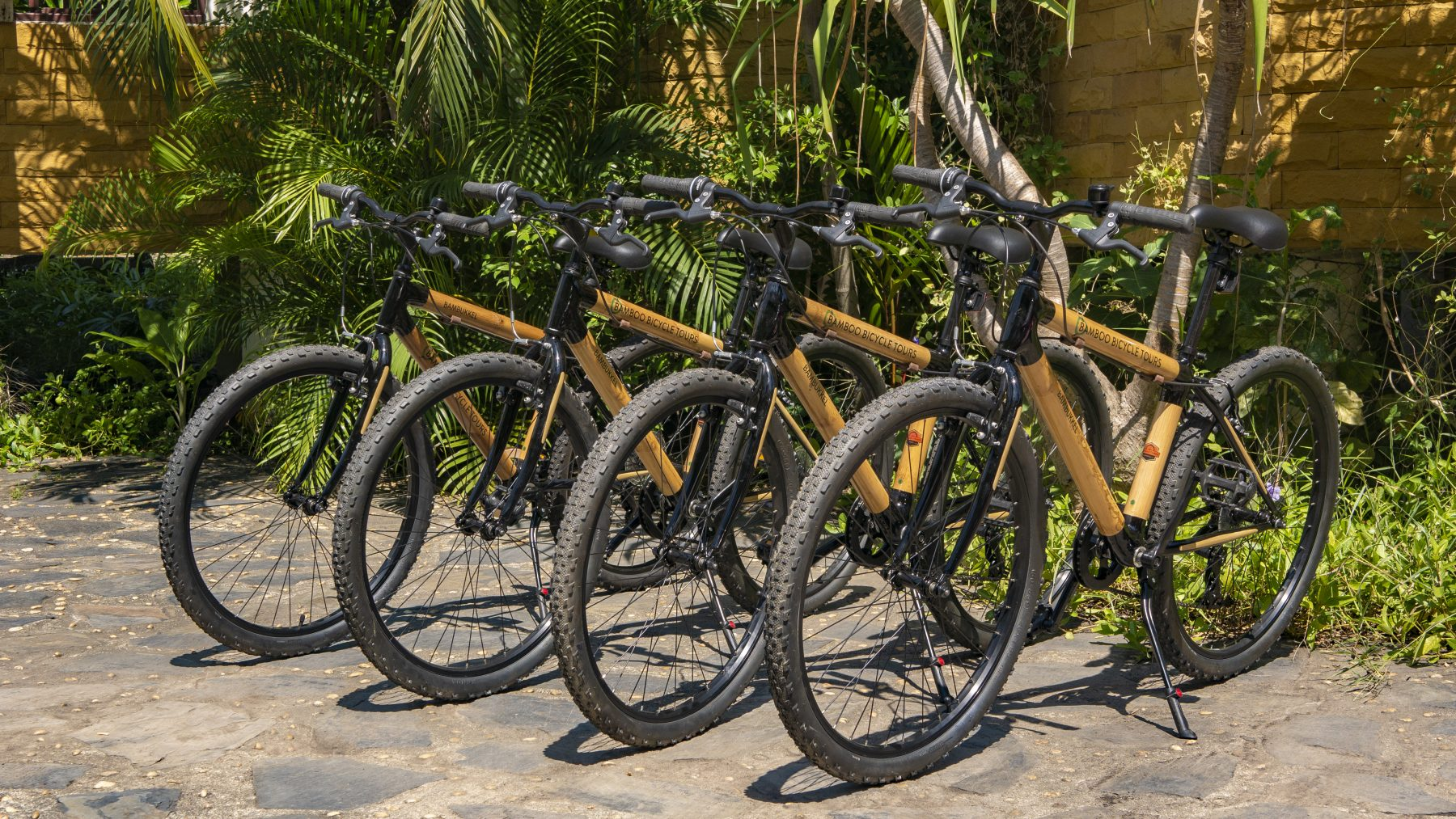 Bamboo bicycle tours